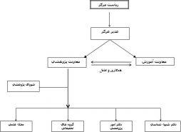 معرفی ساختار معاونت پژوهش